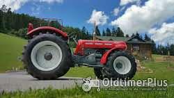 Lindner BF45 Allrad incl. Servolenkung Foto 6