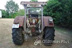 Schlüter SF6600VS 650 Allrad mit Schnellgang Foto 4