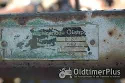 Maschinenbau Güstrow Feingrubber B 231 Foto 2