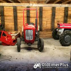 Massey Ferguson MF 35 Narrow Foto 3