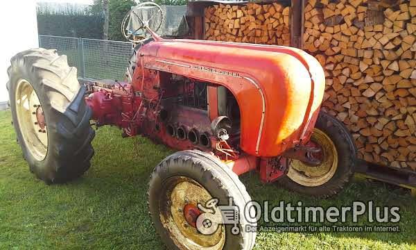 Porsche Diesel; Allgaier Diesel Motor 1 bis 4 Zylinder oder kompletten Traktor 1 - 4 Zyl Motor Foto 1