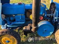 LANZ D3012(vineyard) Foto 9