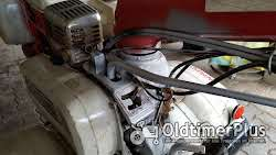 Honda F 800 mit Hänger Foto 10