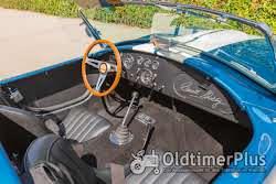Shelby Cobra CSX4000 Foto 2