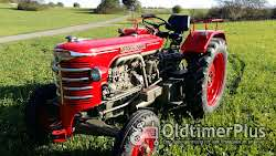 Hürlimann Traktoren die nicht jeder hat Foto 5