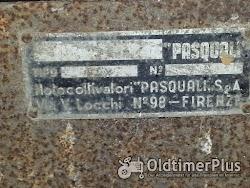 Pasquali Einachsschlepper Foto 4