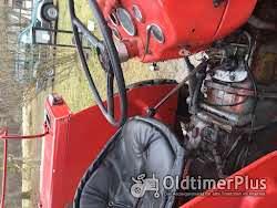 Ferguson MF135 Multi Power mit Frontlader Foto 4
