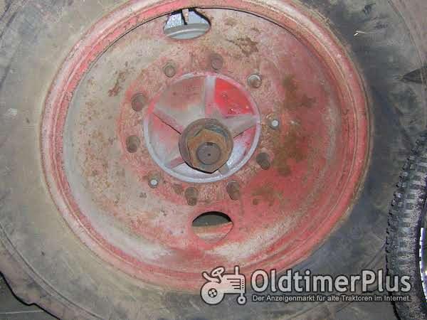 Deutz F2M315 Gussfelge mit Reifen für Stahldeutz / Wasserdeutz Foto 1