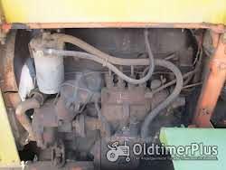 Fiat 25 C Raupe Foto 5