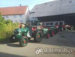 Sonstige Oldtimer Traktoren auf Top Niveau die nicht jeder hat Foto 6