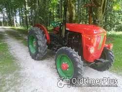 Hürlimann Traktoren die nicht jeder hat Foto 10