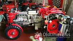 Hürlimann D100 L Foto 4