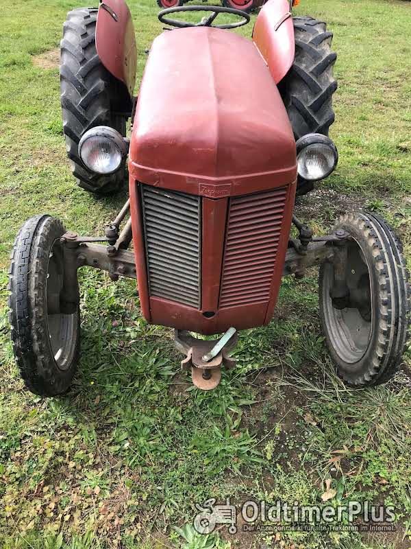 Ferguson TE-F, Diesel Foto 1
