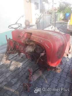 Porsche Porsche Standart T217 BJ 1960 20PS zweizylinder mit Mähwerk, sehr selten