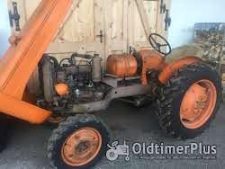 Fiat Oldtimer Schlepper