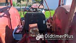 IHC 523S International Harvester Schlepper Traktor McCormick Foto 9