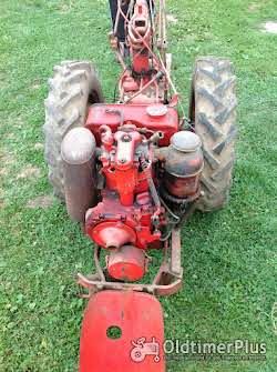 Bungartz Einachser 8 PS Diesel Foto 2