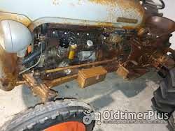 Ferguson Fe 35 Goldbauch Foto 7