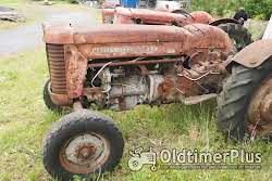 Massey Ferguson MF 65 Foto 2