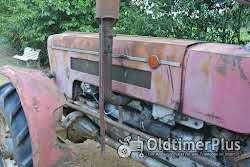 Schlüter SF6600VS 650 Allrad mit Schnellgang Foto 6