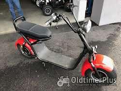 Elektro Roller 500 bis 2 000 Watt Elektro Scooter