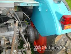 Eicher 554 AS -(3726  S  ) Plantage Foto 6