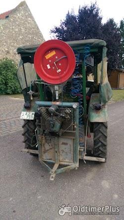 Deutz F1L514 Bauernschlepper Foto 3