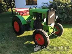 Normag NG22 Oldtimer Traktor mit Papieren /Tüv