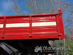 fiat tipper truck need license over 75 ton Foto 5