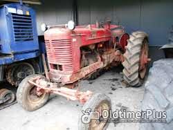 Farmall 2 Stück Mc Cormick Farmall M Foto 9