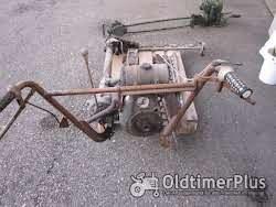 Rotax Einradmotormäher Foto 3