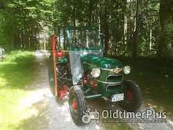 Sonstige Oldtimer Traktoren auf Top Niveau die nicht jeder hat Foto 4