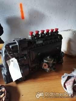 Bosch 6 zylinder Reihen Einspritzpumpe Foto 2
