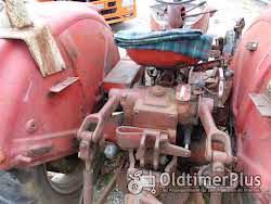 Güldner G 30 S Schnelläufer mit Messerbalken Mähwerk Foto 10
