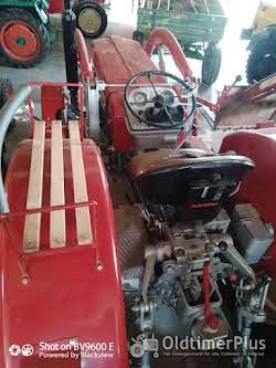 Schlüter S650 oder S400 mit Frontlader Foto 4