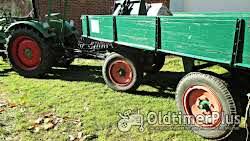 Fendt Farmer 2 Dieselross Foto 6