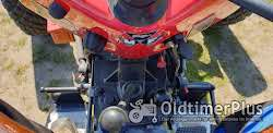 Massey Ferguson MF35 Foto 10