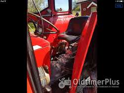 Massey Ferguson MF 185 Multi-Power Foto 6