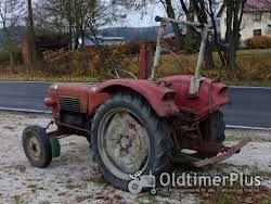 Güldner G 30 S Schnelläufer mit Messerbalken Mähwerk Foto 6