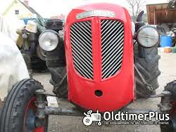 Nuffield Field Boy R 300 DT Allrad, HURTH Allrad-Vorderachse Foto 7