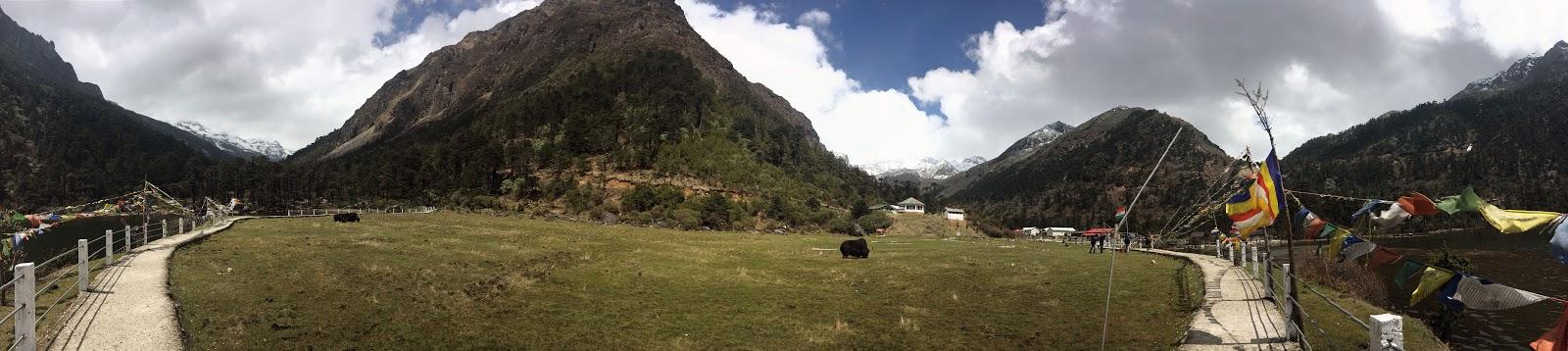 Madhuri panoramic