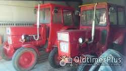 Ursus Universal/UTB 550 Traktor Foto 10