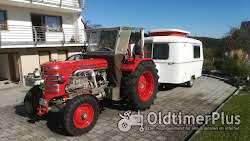 Sonstige Besondere Oldtimer Traktoren zu verkaufen Foto 8