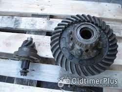 Steyr Tellerrad und Triebling   T 180 26er
