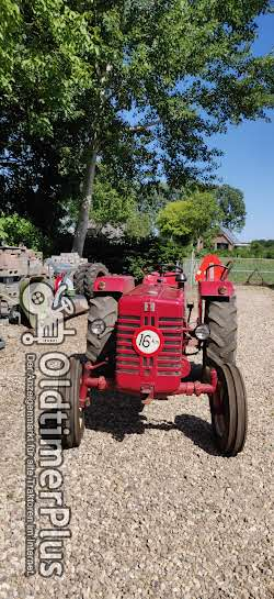 IHC 324 nette tractor Foto 2