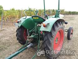 Deutz Oldtimer Traktor F2L612 photo 5