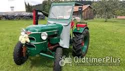 Sonstige Besondere Oldtimer Traktoren zu verkaufen Foto 4