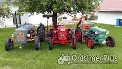 Sonstige Besondere Oldtimer Traktoren zu verkaufen Foto 3