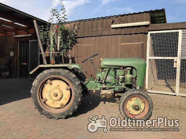 Holder Traktor Holder B 10, Baujahr 1956 mit Pflügen und Eggen Foto 1