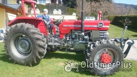 Massey Ferguson MF 168 Allrad MP Foto 1